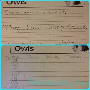 The Note Booking Fairy's owl pages were perfect for spelling practice prep as well.