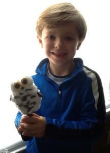 This is the littlest owl he made. My son fell asleep with it the evening he and I made it.