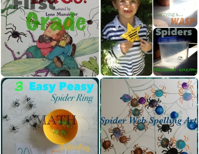 30 Plus Spider Activities for Learning!…Even in Speech