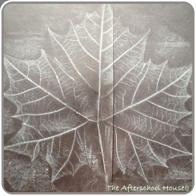Positive and Negative Leaf Art