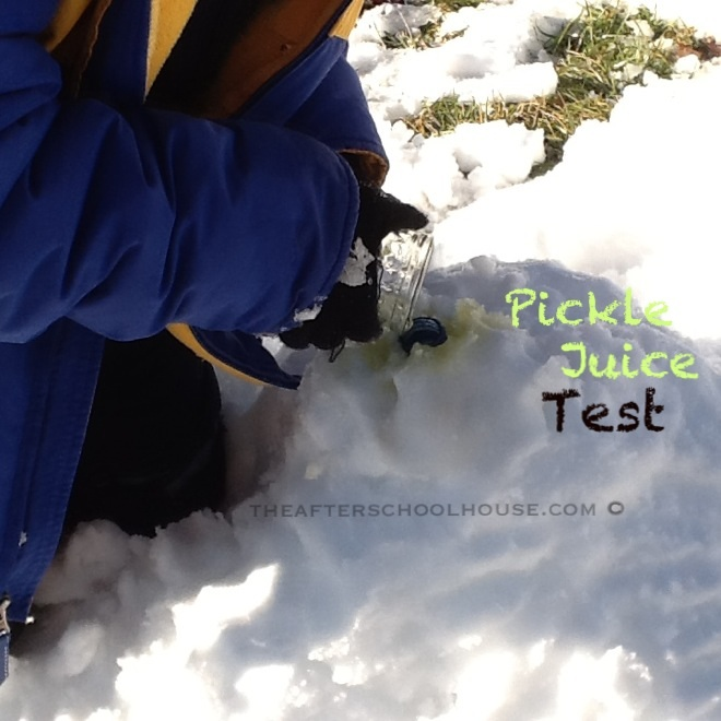Snow Science With REAL Snow